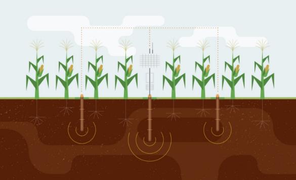 传感器技术在智能灌溉系统中的重要应用