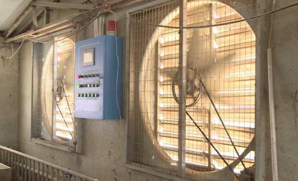 传感器用在国内养殖场智能化环境控制技术中