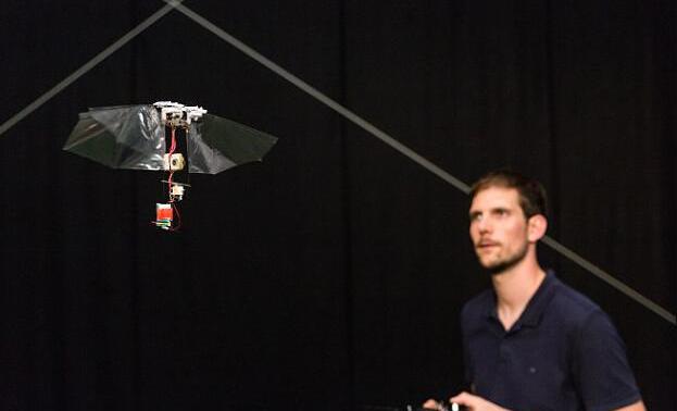 国外开发出果蝇飞行机器人:搭载有<font color=red>陀螺仪</font>可控制平衡
